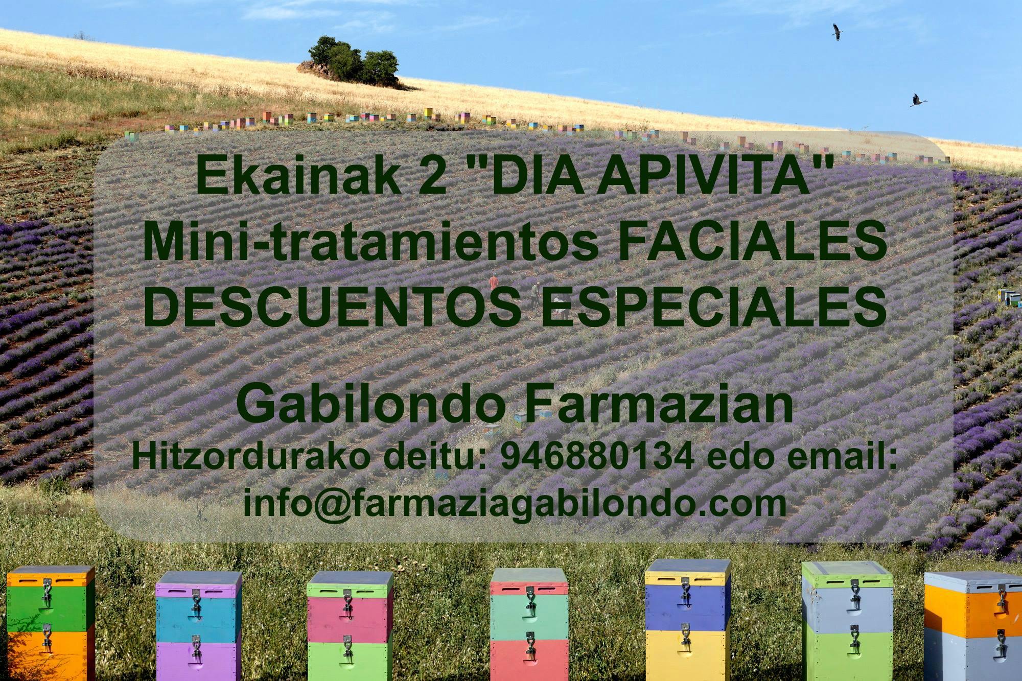 TALLER APIVITA_COSMETICA NATURAL