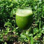 smoothie-zumo verde